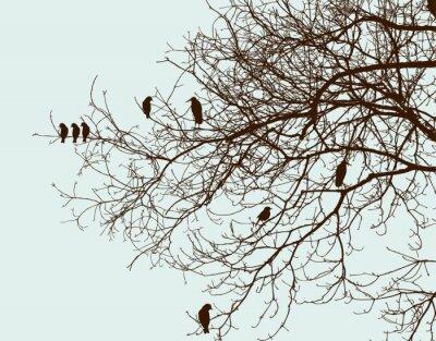 Naklejka drzewo