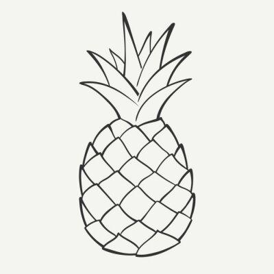 Naklejka Drzewo czarno-biały obraz z ananasem. Grafika wektorowa.