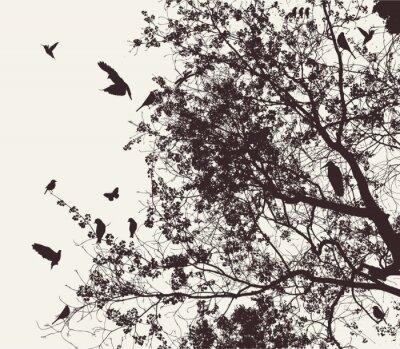 Naklejka drzewo i ptak