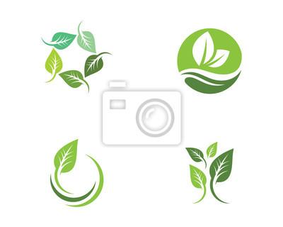 Naklejka Drzewo liść ekologia natura wektor ikona