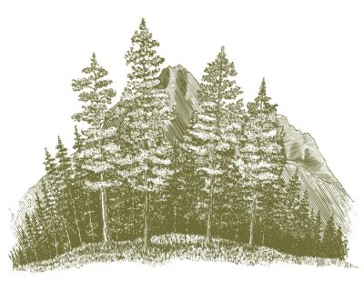 Naklejka Drzeworyt Mountain Drawing