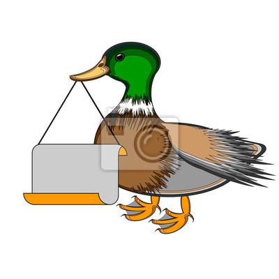 Duck posiadających duży pusty papier w jego dziób