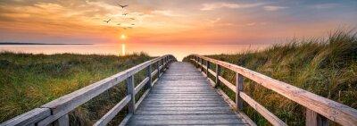 Naklejka Dunes along the North Sea at sunset, Germany