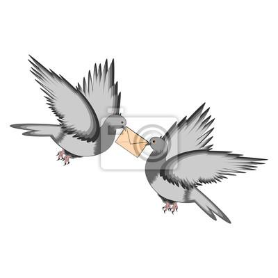 Naklejka Dwa gołębie z list na białym tle