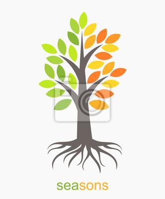 Naklejka Dwa sezony drzewa