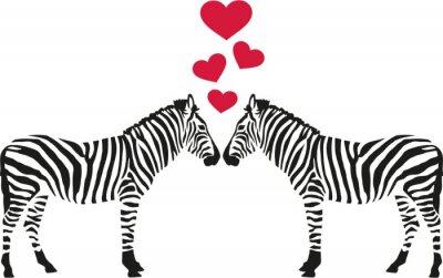 Naklejka Dwie zebry w miłości z serca