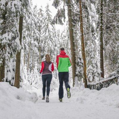 Naklejka Dwóch biegaczy w zaśnieżonych lasach