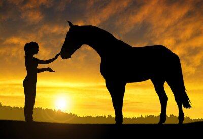 Naklejka Dziewczyna z konia o zachodzie słońca