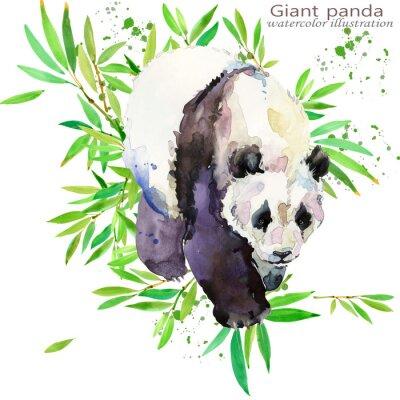Naklejka dzika panda ręka rysować akwarela ilustracja