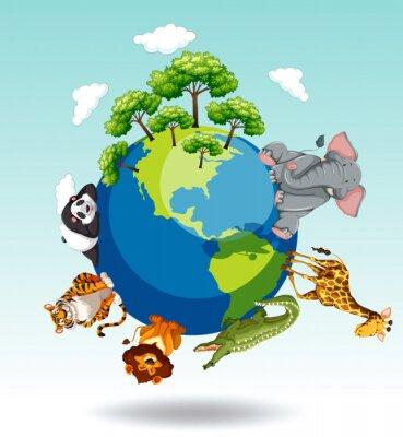 Naklejka Dzikie zwierzęta z całego świata