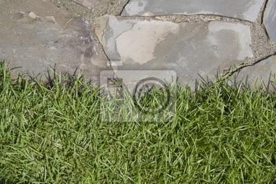 edge trawa flagstone
