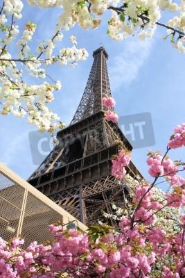 Naklejka Eiffel Tower in spring time, Paris, France