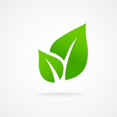 Naklejka Eko ikona liść ilustracji wektorowych odizolowane