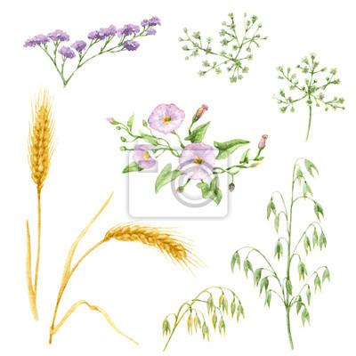 Elementy kwiatowe