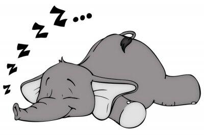 Naklejka Elephant, sen, spanie, chrapanie, marząc
