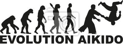 ewolucja Aikido