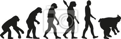 Ewolucja zapasach sumo