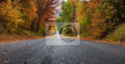Naklejka Fall Road To The Start