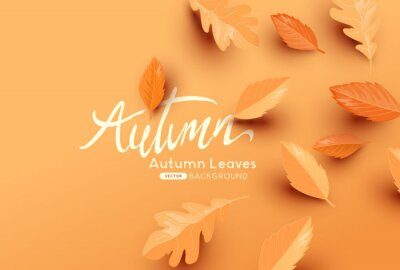 Naklejka Falling autumn leaves background with copy space. Autumn fall vector illustration
