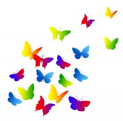 Naklejka farfalle, sylwetka, sagome, Volare, Leggerezza, volo