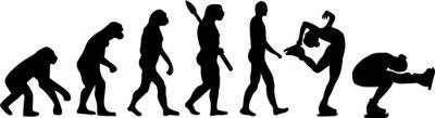 Naklejka Figure Skating Evolution