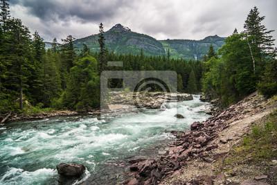 Naklejka flathead river rapids in glacier national park montana