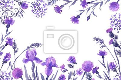 Floral ramki z liliową kwiaty.