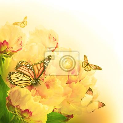Floral tle z róż i motyli, kwiatów