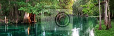 Naklejka Florida wiosna karmione rzeki panorama