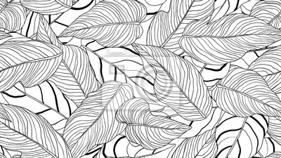 Naklejka Foliage seamless pattern, long leaves line art ink drawing in black and white