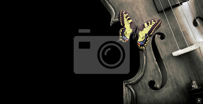 Naklejka Fragment of a violin on a black background. Concert poster for classical music. Beautiful bright butterfly swallowtail sitting on a violin. Music concept. black and white. copy spaces