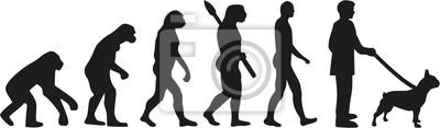 Francuski buldog ewolucja