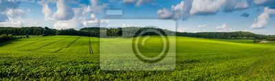 Naklejka fresh green Soybean field hills, waves with beautiful sky