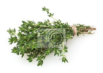 Naklejka Fresh thyme bunch isolated on white background