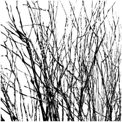 Naklejka Gałązki Drzewo Sylwetka Wektor