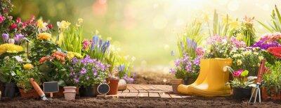 Naklejka Gardening Concept. Garden Flowers and Plants on a Sunny Background