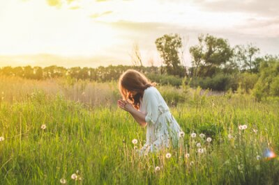 Naklejka Girl closed her eyes, praying in a field during beautiful sunset. Hands folded in prayer concept for faith, spirituality and religion. Peace, hope, dreams concept