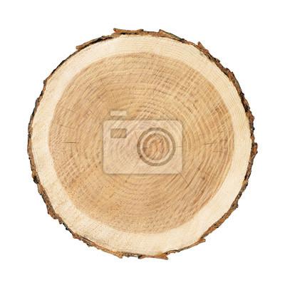 Naklejka Gładki przekrój brązowy pniak drzewa plaster z pierścieniami wieku cięcia świeżych z lasu z drewna zboża samodzielnie na białym tle