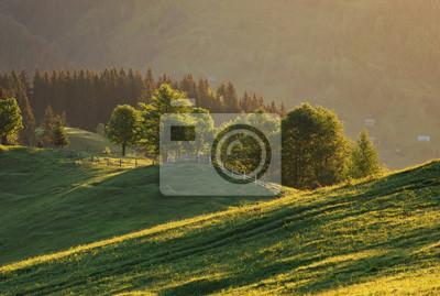 Górska dolina podczas zachodu słońca. Piękny krajobraz naural w okresie letnim