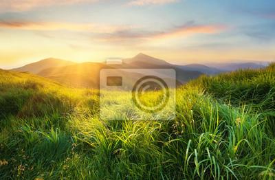 Naklejka Górska dolina podczas zachodu słońca. Pole ze świeżą trawą i górskimi wzgórzami. Naturalny krajobraz w okresie letnim