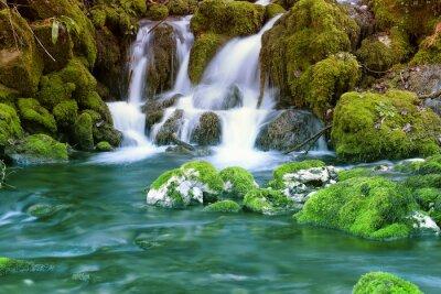 Naklejka Górski potok wśród kamieni omszałych