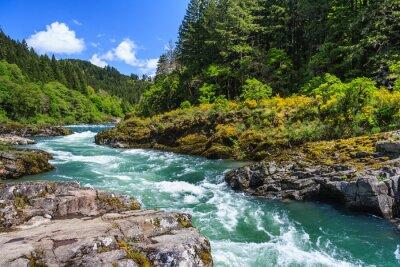 Naklejka Górskie rzeki i lasu w North Cascades National Park, Waszyngton, USA