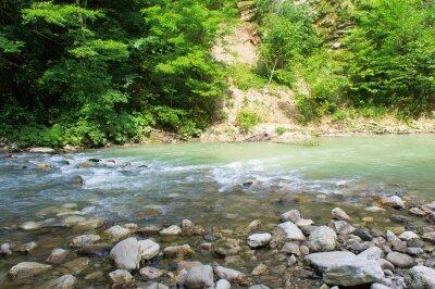 Naklejka Górskie rzeki na Kaukazie koło Soczi