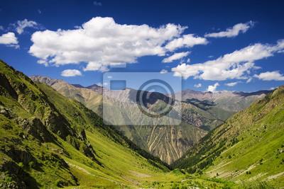Górskiej dolinie w okresie letnim. Piękny krajobraz lato