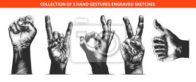 Naklejka Grawerowane w stylu wektor kolekcja gestów na plakaty, dekoracje, godło i druk. Ręcznie rysowane szkice w monochromatyczne na białym tle. Szczegółowy rysunek w stylu drzeworyt vintage.