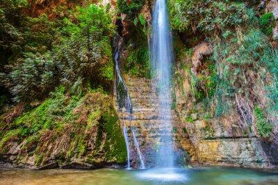Naklejka Great Falls Shulamit