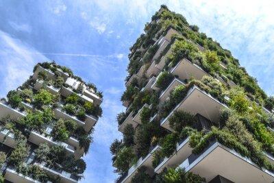 Naklejka Green building