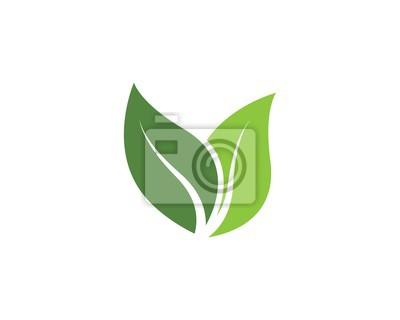 Naklejka green leaf ecology nature vector icon