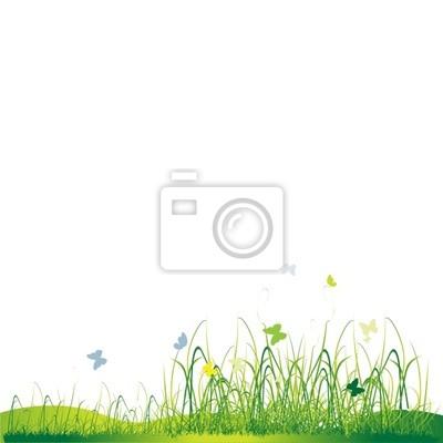 Naklejka Green sylwetka Grass, latem w tle