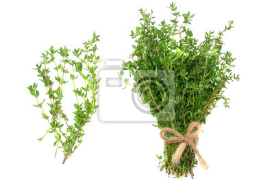 Naklejka green thyme bunch isolated on white background. top view
